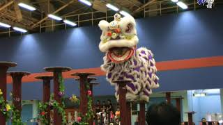 Publication Date: 2020-04-23   Video Title: 香港教育工作者联会黄楚标中学鹰鹤龙狮团