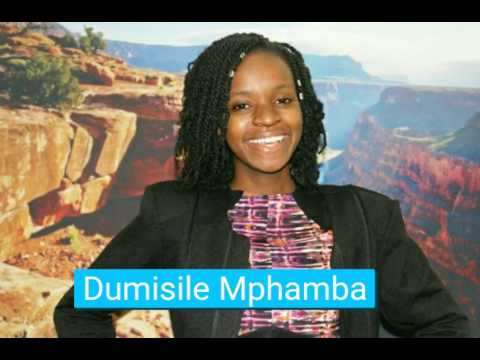 Zim student gets US scholarship offers