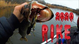 Закрытие сезона 2020 Рыбалка на щуку