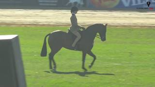 2018 Royal Adelaide Show Main Arena LIVE - Day 8