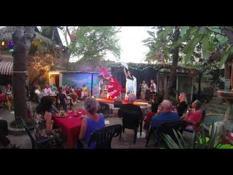 Alegrías by Flamenco La boquita World music, Live at Octopus Garden