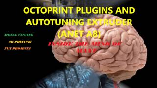 octoprint plugins and auto tuning extruder anet a8