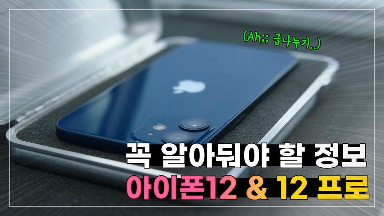 급나누기.. 결국 비싼게 최고? 아이폰12 발표 핵심 총정리 | 아이폰12 미니 / 프로 맥스 한국출시일 & 꼭 알아둬야 할 정보!