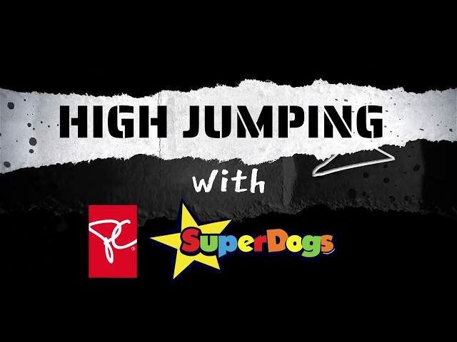High Jumping With The SuperDogs