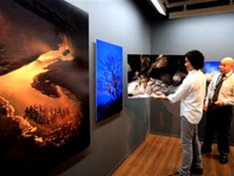写真展「越冬」北国の厳冬を乗り切る野生動物たち (2013/03/08)北海道新聞