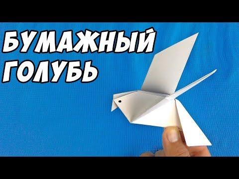Мастер-класс ГОЛУБЬ ИЗ БУМАГИ   Птица - оригами для детей и начинающих   Paper Dove Origami