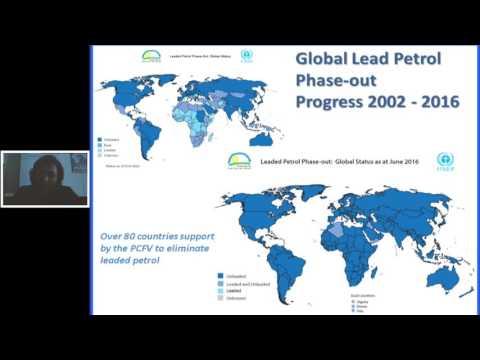 E-mobility in UN Environment - Kamala Ernest / STE2016