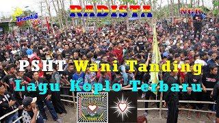 Psht Wani Tanding  Hana Kimy Radista Music