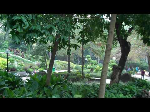 HD Tour of Hong Kong - Kowloon Park 1