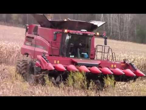 Harvesting Corn at Ridge View Farm  11-6-18