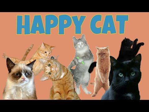 HAPPY CAT.(MEME)