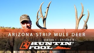 Huntin' Fool TV Season 01 Episode 09 - Arizona Strip Mule Deer