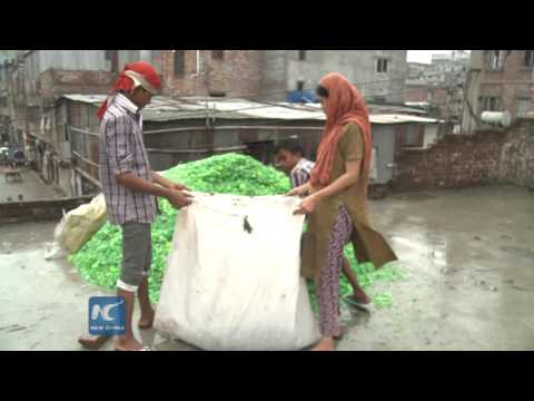 PET bottle flakes life for hundreds of thousands of Bangladeshis
