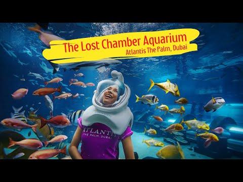 THE LOST CHAMBER AQUARIUM, ATLANTIS THE PALM | DUBAI 2020