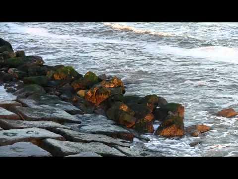 Kemah BoardWalk, Marina, and Galveston Seawall