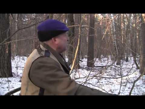 Охотничьи истории охота на кабана