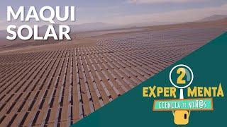 Maqui solar | Experimenta, ciencia de niñ@s