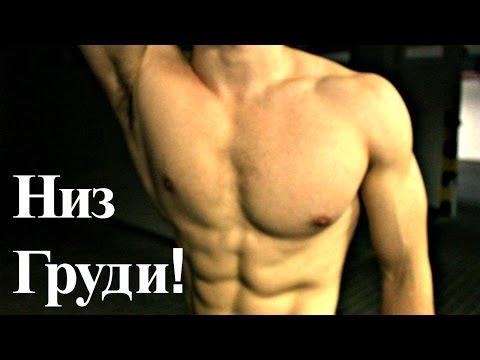 Как накачать низ грудных мышц в домашних условиях