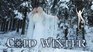 Cold Winter: Skaði's lullaby   Snow Queen - Magic Forest - Fantasy Music   Priscilla Hernandez