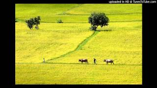 Đất nước (Nguyễn Khoa Điềm)
