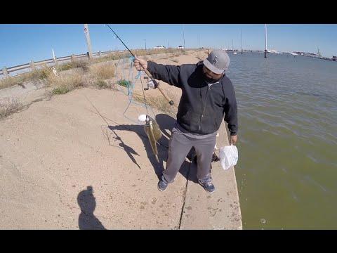 Flounder Fishing Galveston Texas November 2015