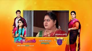 Kalyana Vaibhogam - Spoiler Alert - 9 July 2019 - Watch Full Episode BEFORE TV On ZEE5 - EP - 572