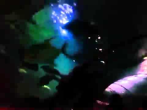 Video G  Novinta JKT48 ~ SeaWorld Jakarta