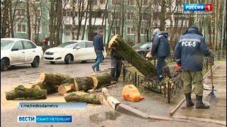 Вести Санкт Петербург Выпуск 21 05 от 04 05 2021