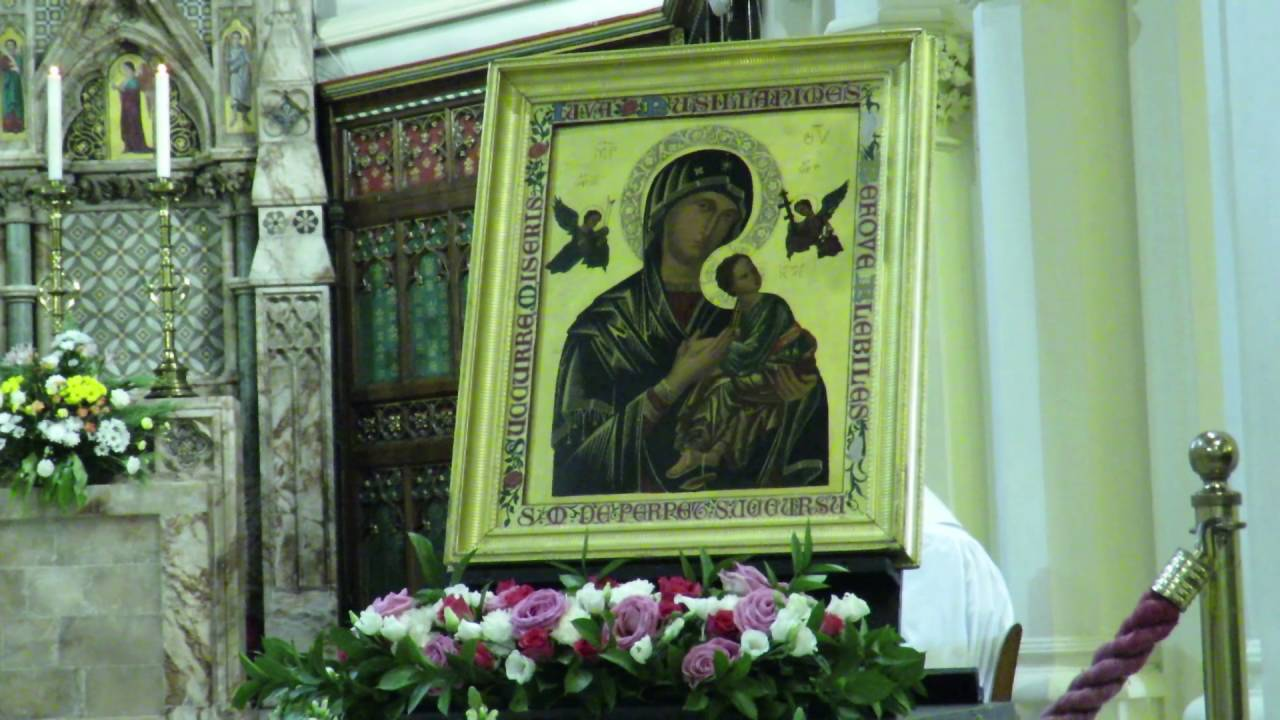 Homilies and Reflection