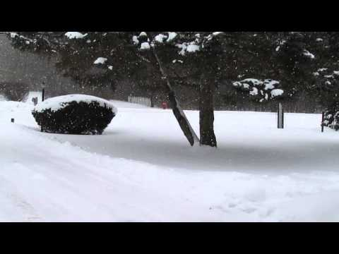 February 8th 2014 Snow Storm DuPage County Illinois