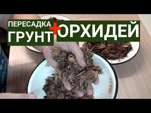 ПЕРЕСАДКА и ГРУНТ для ОРХИДЕИ 1-я часть