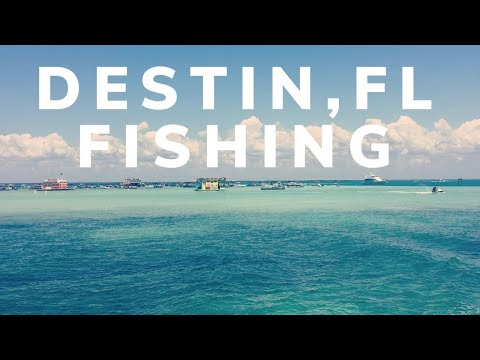 Deep Sea Fishing| Destin, Florida| (caught A Dolphin - Safely Released)