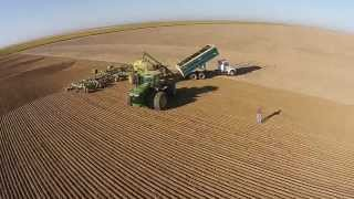 2014 Kansas Wheat Planting