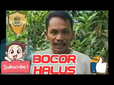 Lagu Sibolga Bocor Halus - Maswin Pinayungan