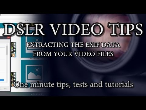 How to get EXIF data from Canon video files (for Windows)