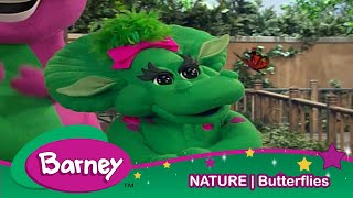 Barney|Buttersflies|NATURE|Education for Kids