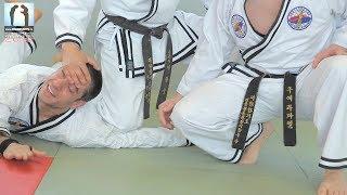 HAPKIDO - Maître Lee Chang Soo
