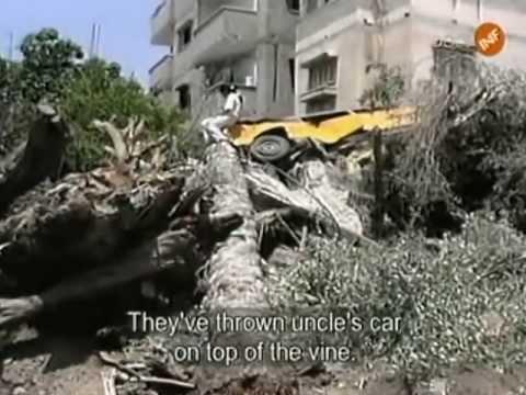 James Miller en Gaza
