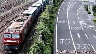 【貨物続々♪】早朝の貨物列車 カラシ トヨタロングパスエクスプレス リゾートやまどり EH200 EH500 EF65 EF210 251系 485系 さいたま新都心  2019.7