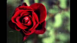 Song of the flower (YANNI-IN THE MIRROR)