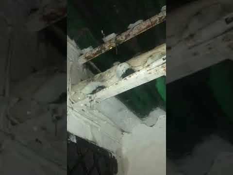 Los vecinos de González de la Vega,4 denuncian el estado ruinoso del edificio