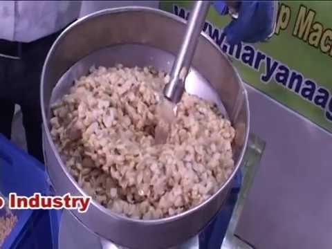 soya milk/soya paneer & soya curd(dahi) process(Haryana Agro Industry)