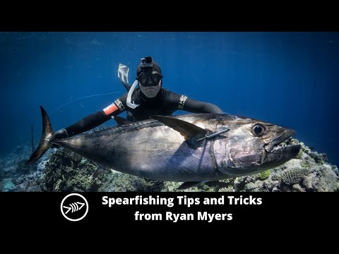 Instagram Live Session- Spearfishing Tips From Ryan Myers