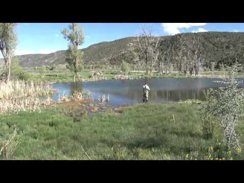 Eastern Utah Steelhead Fishing 1