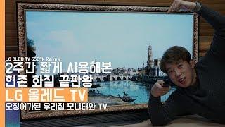 현존 화질 끝판왕 LG 올레드 TV 2주 사용기. 오징어가된 우리집 모니터와 TV(LG OLED TV 55E7K Review)