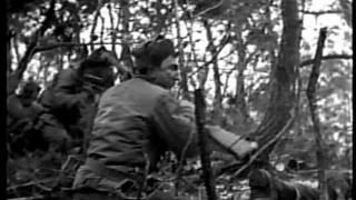 Wesley Fox, Medal of Honor, Vietnam War