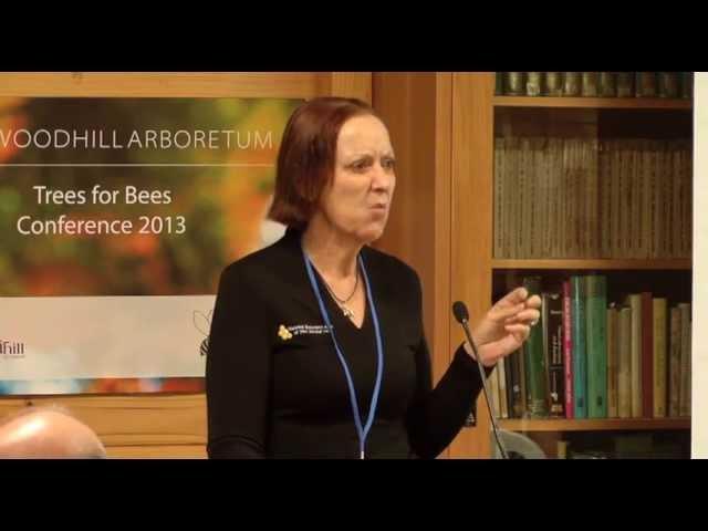 International Developments To Support Bee Friendly Habitats - Maureen Maxwell,Trees for Bees