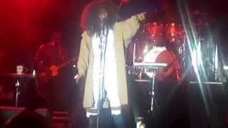 """Erykah Badu Performs """"Woo"""" w/ The Roots at 2015 The Roots Picnic"""