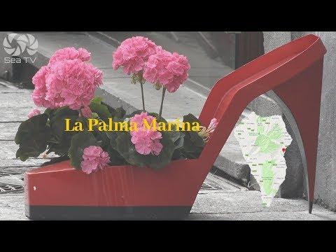 Sail Tenerife, Spain-La palma marina santa cruz canary islands | SeaTV