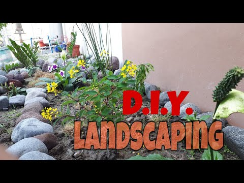 Cheap and easy landscaping D.I.Y